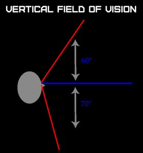 vertical-field-of-vision